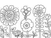 Растения цветы