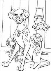Пэдди защищает щенков