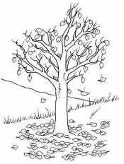 Дерево с опадающими листьями