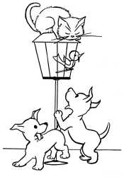 Кошка и сабака для детей