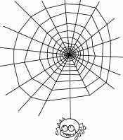 Паук у паутины