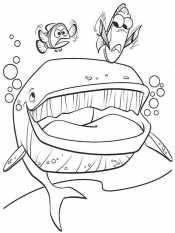 Марлин, Дори и кит
