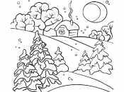 Пейзаж зимы