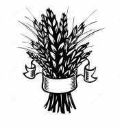 Пшеница в ленточке