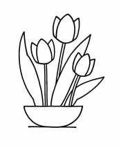 Тюльпаны в чашке