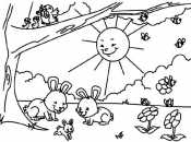 солнышко и зайчики