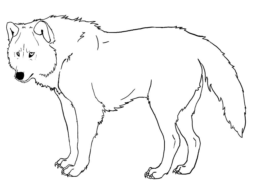 Lobos Perros Siluetas Mamíferos: Раскраска Волк